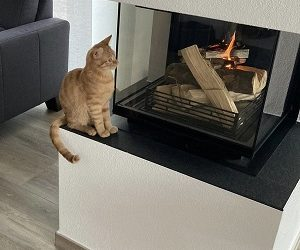 Brandgefahr am Kamin